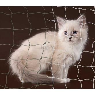 Cat protected with a Boy-Cat-Net with stainless steel reinforcement