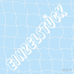 Special Offer - Boy Cat Net - wire reinforced - colour white - 40mm Mesh - 6,50 x 4,00m