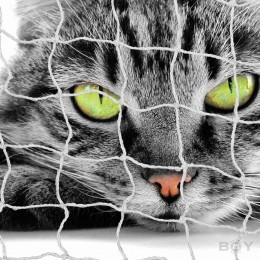 Boy Cat Nets in 30mm mesh, with stainless steel wire reinforcement