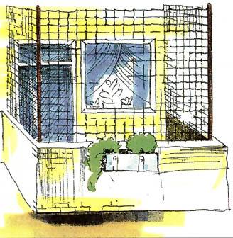 Freistehender Balkon - Boy-Katzennetze